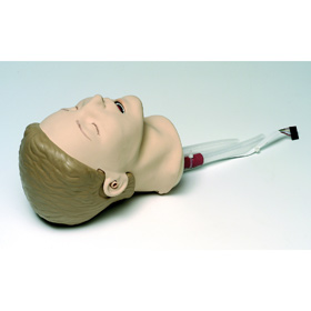 LAERDAL Resusci Anne Airway Trainer Update Kit